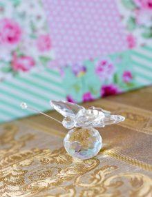 Marturie nunta fluturas din sticla