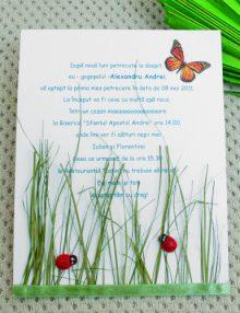 """Invitatie de nunta tematica """"The garden"""""""
