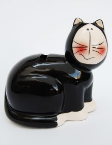 marturie-botez-pisicuta